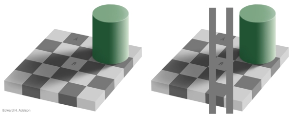 checker board illusion