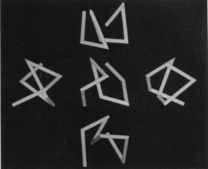 Paper clip like objects used in Bulthoff's experiments
